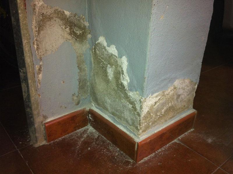 Eliminate humidity in Torremolinos