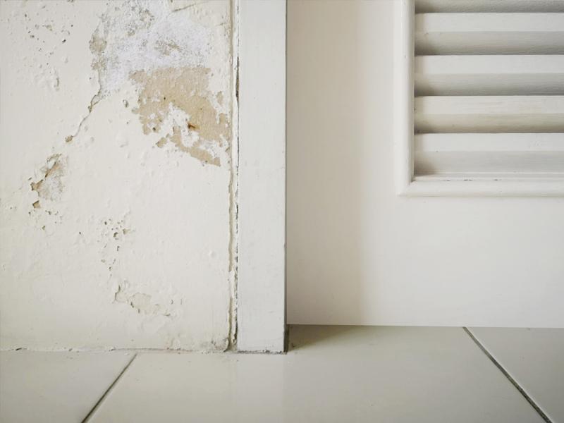 Solución a la pared con humedad